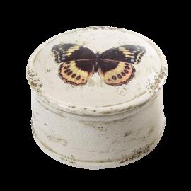 Dóza - hnědý motýl