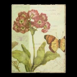 Obraz Petrklíč a motýl