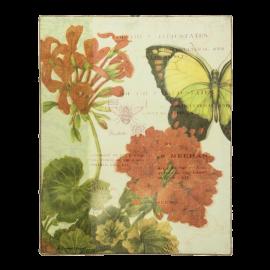 Obraz Muškát a motýl
