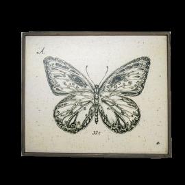 Nástěnný obraz Hmyz