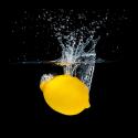 Obraz Svěží citron