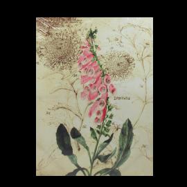 Obrázek květina